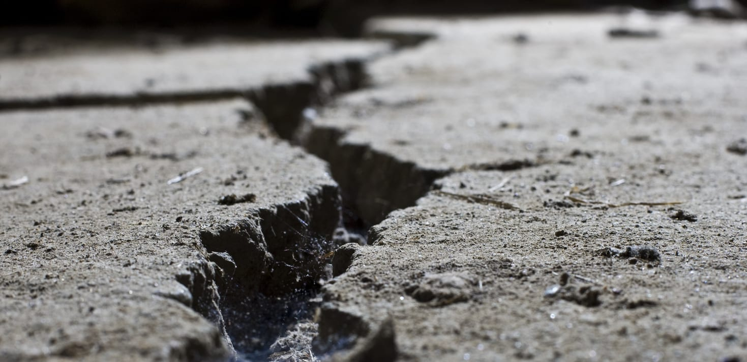 Why Filling Cracks Saves You Money